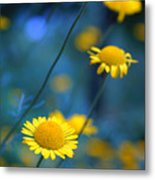 Momentum 04a Metal Print by Variance Collections