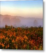 Morning Color-7 Metal Print by Robert Pearson