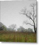Morning Fog Metal Print by Ryan Heffron