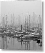 Morning Fog Metal Print by Terence Davis