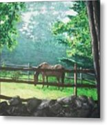 Morning Pasture Metal Print by Jack Skinner