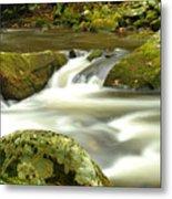 Mountain Stream 3 Metal Print by William Jones
