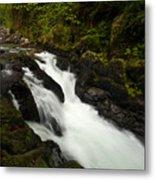 Mountain Stream Metal Print by Mike Reid