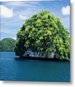 Mushroom-shaped Island Metal Print by Dave Fleetham - Printscapes