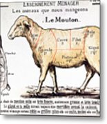 Mutton Metal Print by French School