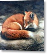Naptime In The Pine Barrens Metal Print by Sandra Chase