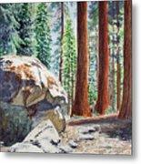 National Park Sequoia Metal Print by Irina Sztukowski