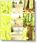 Nature Scape 015 Metal Print by Robert Glover