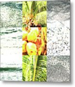 Nature Scape 024 Metal Print by Robert Glover