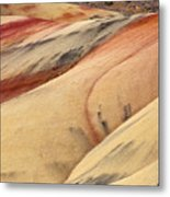 Nature's Palette Metal Print by Mike  Dawson