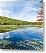 Northern New Jersey Lake Metal Print by Ryan Kelly