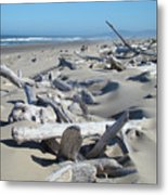 Ocean Coastal Art Prints Driftwood Beach Metal Print by Baslee Troutman
