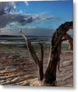 Ode To The Estuary Metal Print by Kym Clarke