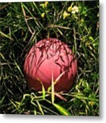 Old Basketball In The Grass Metal Print by Robert Sawin