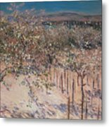 Orchard With Flowering Apple Trees Metal Print by Gustave Caillebotte