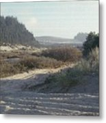 Oregon Dunes 5 Metal Print by Eike Kistenmacher
