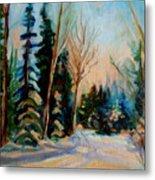 Ormstown Quebec Winter Road Metal Print by Carole Spandau