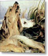 Otter Hounds Metal Print by Sir Edwin Landseer