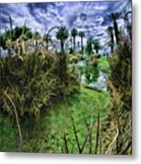 Palm Desert Sky Metal Print by Blake Richards