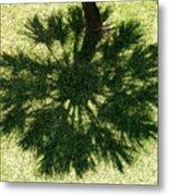 Palm Shadow Metal Print by Richard Mansfield