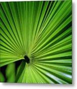 Palmgreen Metal Print by Al Hurley