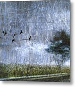 Passing By Metal Print by Carol Leigh