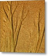 Patterns In The Sand Metal Print by Elizabeth Hoskinson