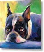 Pensive Boston Terrier Dog Painting Metal Print by Svetlana Novikova