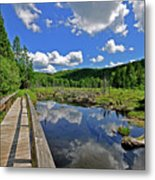 Perfect Day Metal Print by Russell Todd