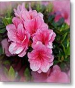 Pink Azaleas Metal Print by Sandy Keeton