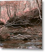 Pink Forest Metal Print by Svetlana Sewell