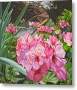Pink Geraniums Metal Print by Lea Novak
