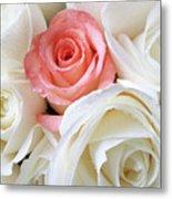 Pink Rose Among White Roses Metal Print by Garry Gay