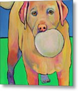 Play With Me Metal Print by Pat Saunders-White