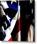 Pledge To The Usa Metal Print by Susie Weaver