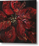 Poinsettia Metal Print by Nadine Rippelmeyer