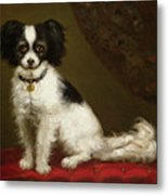 Portrait Of A Spaniel Metal Print by Anonymous