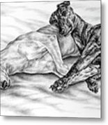 Potato Chips - Two Greyhound Dogs Print Metal Print by Kelli Swan