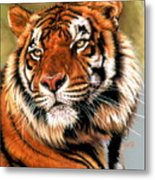 Power And Grace Metal Print by Barbara Keith