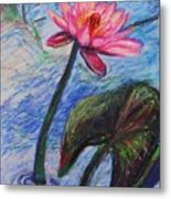 Pretty Pink In The Pond Metal Print by Emily Michaud