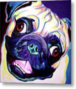 Pug - Rider Metal Print by Alicia VanNoy Call
