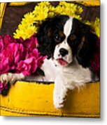 Puppy In Yellow Bucket  Metal Print by Garry Gay