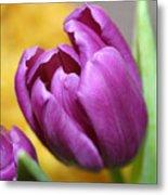 Purple Spring Metal Print by Linda Sannuti