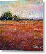 Quiet Over The Field Metal Print by Peter R Davidson