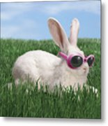 Rabbit With Sunglasses Metal Print by George Caswell