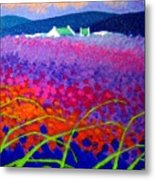 Rainbow Meadow Metal Print by John  Nolan