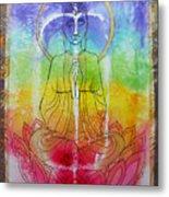 Rainbowbuddha Metal Print by Joan Doyle