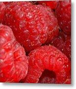Raspberries Metal Print by Mark Platt