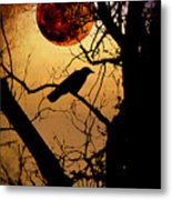 Raven Moon Metal Print by Bill Cannon