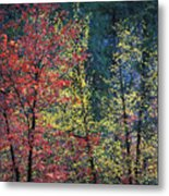 Red And Yellow Leaves Abstract Horizontal Number 1 Metal Print by Heather Kirk